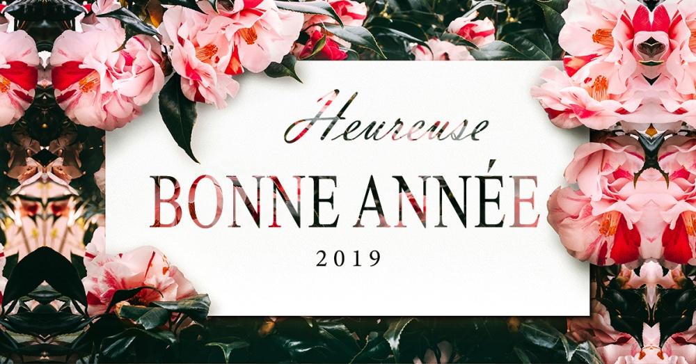 Bonne_Annee_2019_fb